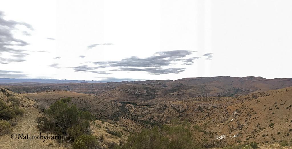 Kranskop view